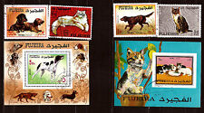 Fujeira the animals pets: Chiens and cats C96