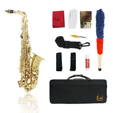 NEW PROFESSIONAL GOLD Bb CURVED SAXOPHONE SAX PACKAGE MG