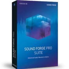 MAGIX Sound Forge Pro 12 Suite Audio Waveform Editor Software Download (EDU)
