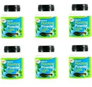 Cuttings Seeds Plants - DOFF Hormone Rooting Powder - 15 Gram Pouch