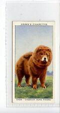 (Jc6701-100)  OGDENS,CHAMPIONS OF 1936,CHOW CHOONAM HUNG KWONG,CRUFTS,1937,#47