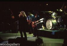 Robert Plant and Jimmy Page, Vintage, Never Printed! original 35mm film