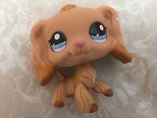 Littlest Pet Shop RARE Cocker Spaniel Dog Puppy #1716 Dipped Flower Tan Blue LPS