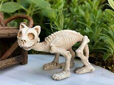 Miniature Dollhouse FAIRY GARDEN ~ Mini HALLOWEEN Cat Skeleton Figurine ~ NEW