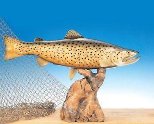 "Taxidermy Brown Trout 13"" Fiberglass Fish Home Decor Trophy"
