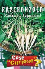 CAMPANULA RAPUNCULUS 1 Confezione 1 Pack semi seeds Raperonzolo