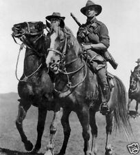 "7x3/"" Reprint Photo 1 Australian Army Camp Horses Turkey Mt Olivet World War 1"