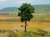 Noch HO-TT-N, 21911 Kiefer, 12 cm hoch PROFI-Baum, GMK World of Modelleisenbahn