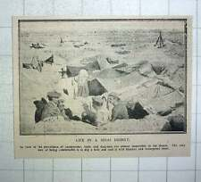 1917 Sinai Desert Dugout Dig A Hole Blanket Roof And Waterproof Sheet
