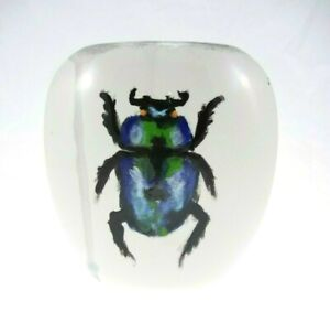"""6"""" Double Sided Green Beetle Vase White & Black Insect Bug Theme"""