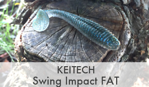 """KEITECH Swing Impact Fat Ring Body Worm 2.8"""" 3.3"""" 3.8"""" 4.3"""" 4.8"""" 5.8"""" From Japan"""