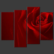 RED ROSE CANVAS WALL ART PICTURES PRINTS DECOR LARGER SIZES AVAILABLE