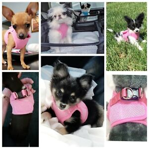 XXXS XXS XS Small Puppy Dog Harness Clip Coat Chihuahua Teacup Dog Kitten Pet