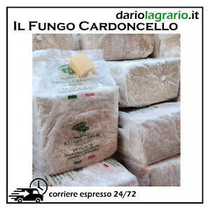 SUBSTRATO PER COLTIVAZIONE DI FUNGO CARDONCELLO BALLETTA KIT FUNGHI CARDONCELLI