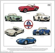 AC COBRA The Sports Car - Fine Art Print - 260 AC289 427 Daytona Coupe Shelby V8