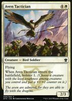 4x Aven Tactician | NM/M | Dragons of Tarkir | Magic MTG