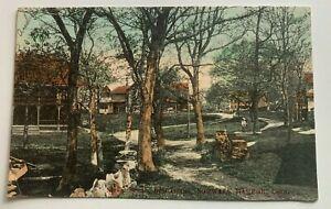 1912 CT Postcard Norwalk Harbor Connecticut Bell Island Street Scene houses path