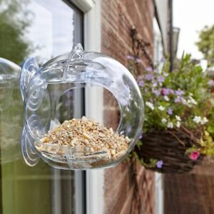 Peckish Globe Window Feeder For Birds