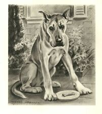 Great Dane - Vintage Dog Print - 1947 M. Dennis
