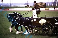 More details for set of 12 brewery horses and drays at country sow original 1980's 35mm slides