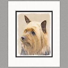 Silky Terrier Australian Dog Original Art Print 8x10 Matted to 11x14