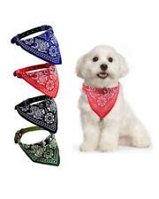 Collare con bandana in ecopelle per cani di taglia piccola