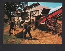SCENE AGRICOLE / AGRICULTEUR & MOISSONNEUSE BATTEUSE au travail