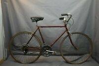 1974 Schwinn Suburban Vintage Cruiser Bike Medium 56cm Comfort Steel USA Charity
