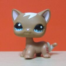 Littlest Pet Shop Collection LPS #1170 Brown Short Hair Kitty Cat Toys