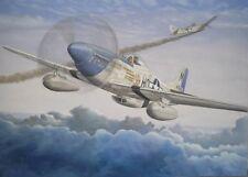 MUSTANG P51 B/D par BRIAN TAYLOR: plans, capot, cone d'hélice, verrière...