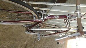 1979 Centurion Pro Tour Touring Bicycle