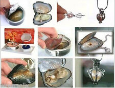 Christmas Day Gift One Oyster Pendant Wish Pearl Necklace Set