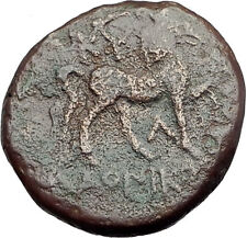 KYME in AEOLIS 250BC Authentic Ancient Greek Coin Cyme AMAZON & Horse i62804