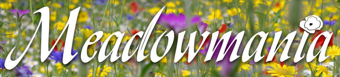 MeadowMania Wildflower Seeds