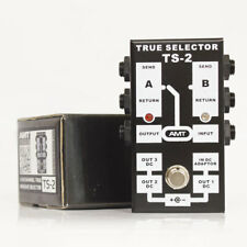 AMT Electronics TS-2 – A/B channel/pedal passive selector