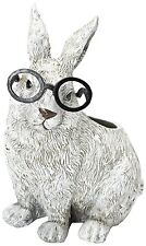 Roman White Rabbit Wearing Silly Black Spectacles Planter (Cb4)