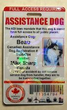 HOLOGRAPHIC CANADA SERVICE DOG ID CARD BADGE ADI LAW ASSISTANCE ANIMAL TAG 23