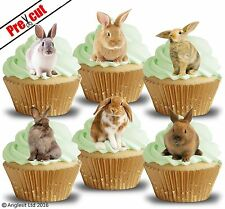 PRE-CUT BUNNY RABBITS II. EDIBLE WAFER PAPER CUP CAKE TOPPERS DECORATIONS