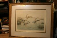Signed Matted & Framed Ducks 27x34 Frame G.F. ROTIG Hand Colored Etching