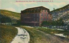 PINE HILL NY – New Mountain Inn – Catskill Mountains