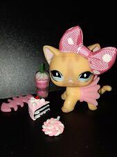 """LPS Pet shop Chat Europeen / Petshop Short Hair Cat Kitty #886 """"AUTHENTIC"""" + Acc"""