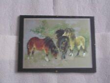 Bild mit Rahmen  ~~  3 Ponys  ~~  Bild 5