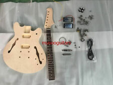 Project Electric Guitar Builder Kit DIY With All Accessories