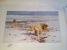 Lone Wanderers Of The Arctic David Shepherd Sold Out LE Print Polar Bears