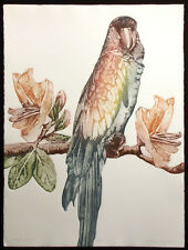 """Catherine O'Connor """"Hollingsworth"""" Hand Signed Fine Art Etching, tropical parrot"""