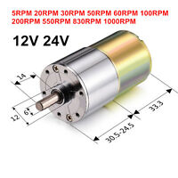12V 24V DC 60RPM 100RPM 200RPM 1000RPM High Torque Gear-Box Electric Motor Hot