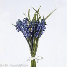 Muscari o uva Jacinto Bundle Azul 25cm/10 Pulgadas Lazo de Satén