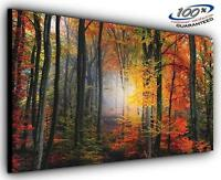 Mystical Forest Panoramic Canvas Wall Art Print Framed XXL 55 inch x 24 inch Ove