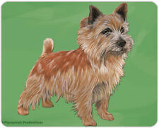 """Norwich Terrier Cutting Board Tempered Glass 8"""" x 10"""""""