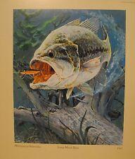 Rapala Large Mouth Bass Print Micropterus Salmoides